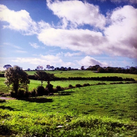The Northern Irish countryside near Saintfield, Northern Ireland