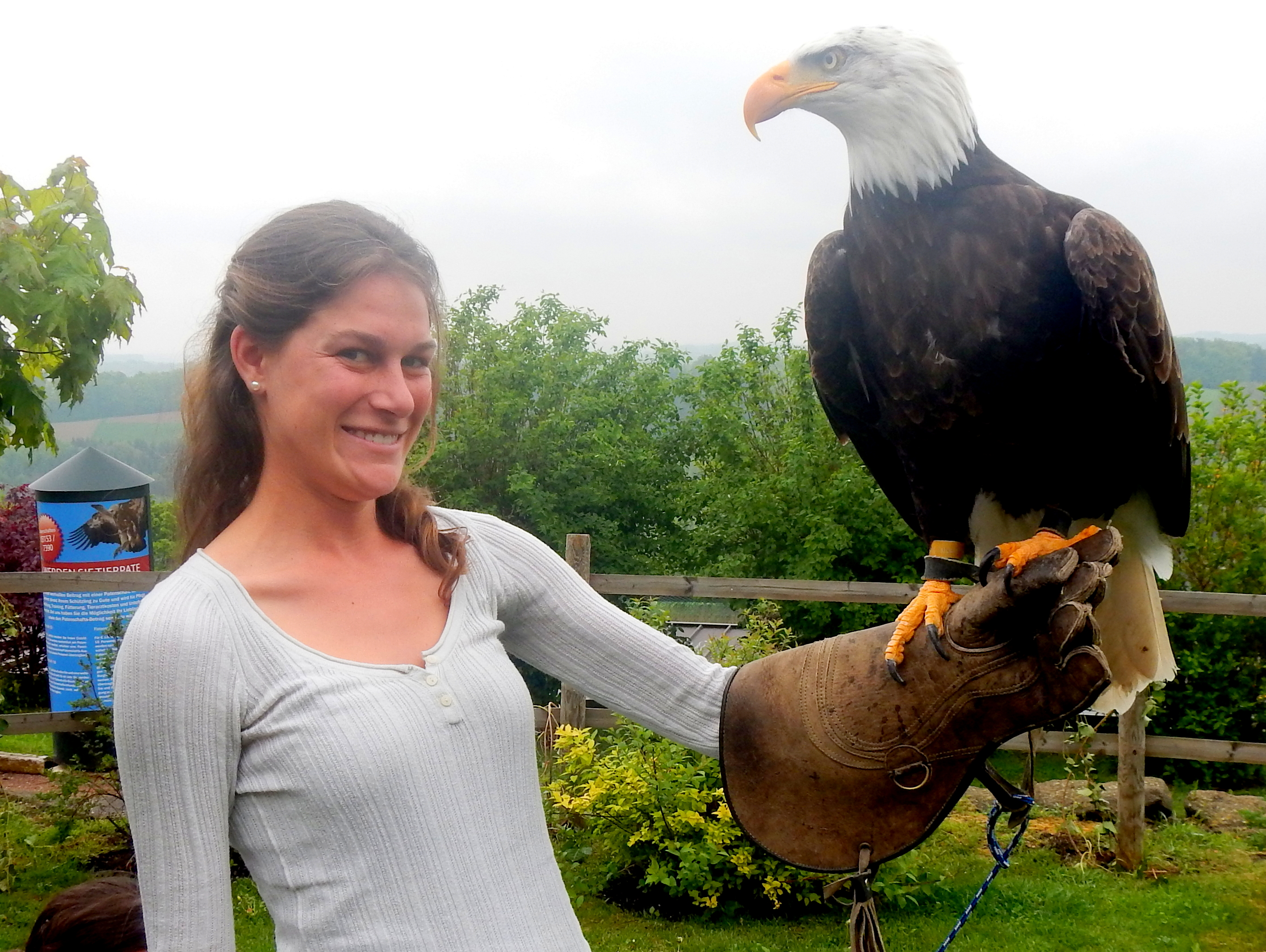 The Riegersburg Falconry, Austria