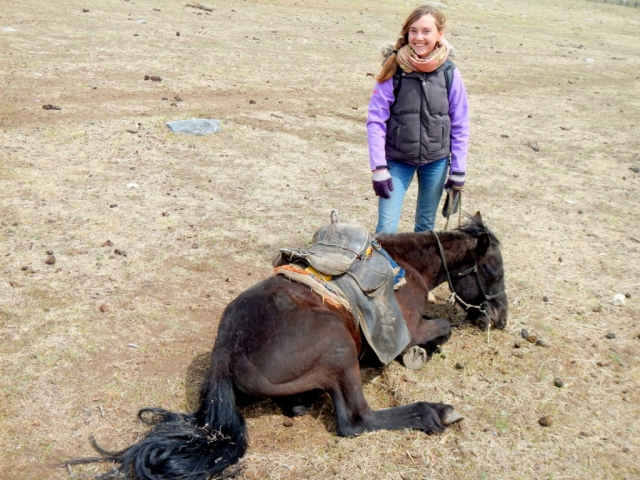 When your horse decides he's done walking, and you don't really know what to do. Horse-trekking in Northern Mongolia.