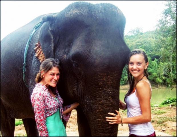 Elephants near Luang Prabang, Laos