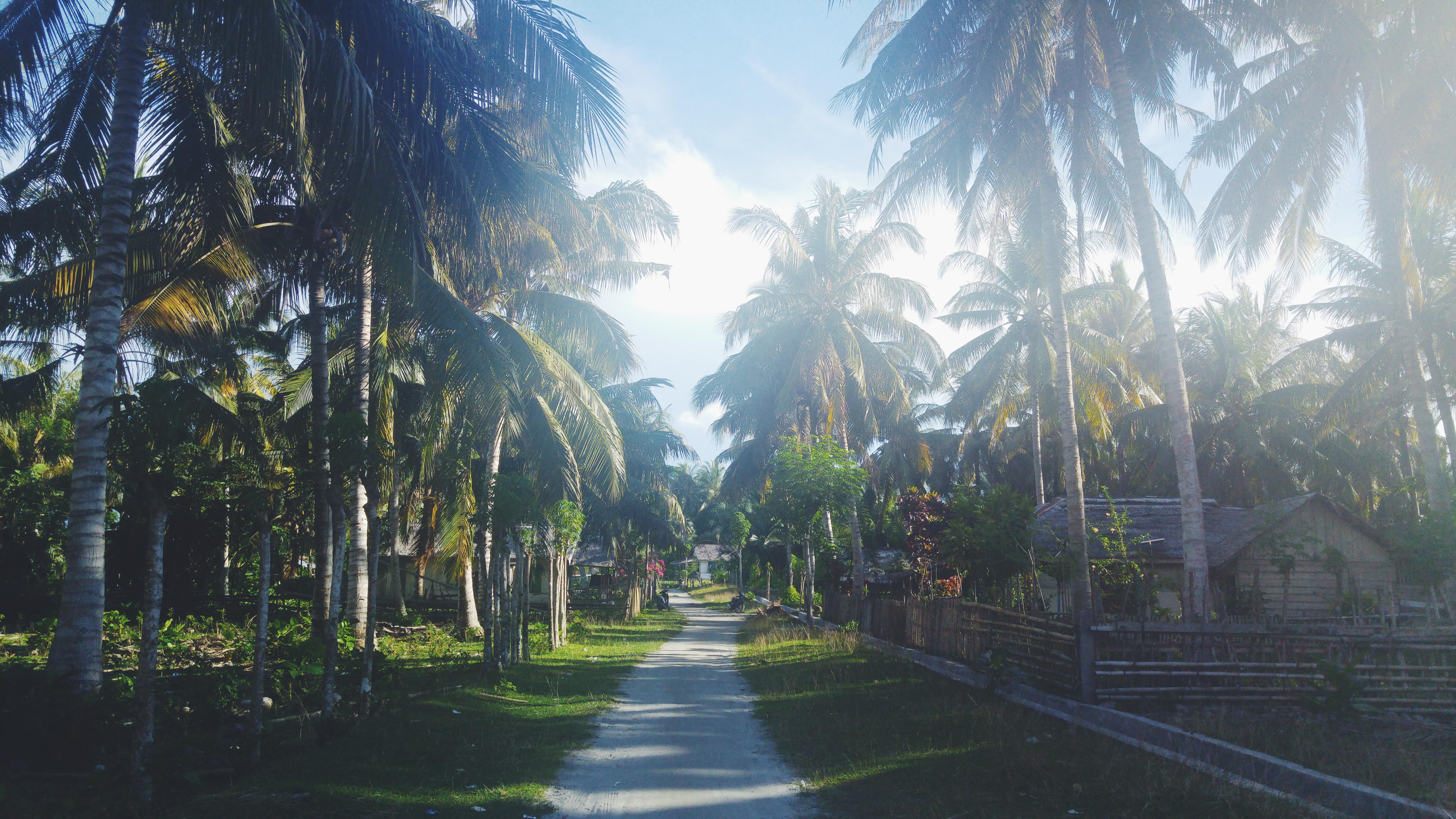Indonesia, Pulau Unauna