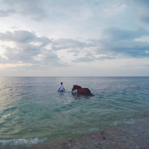 Indonesia, Gili Air- just a man and his horse, going for a swim