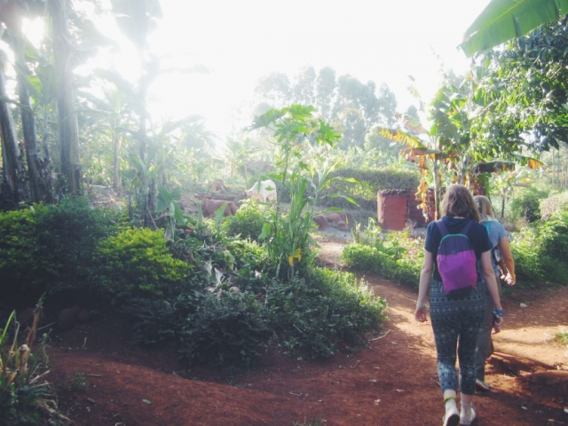 Sipi, Uganda- taking a coffee tour